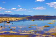 Mono Color Posters - Mono Lake Poster by Ricky Barnard