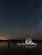Mono Color Posters - Mono Lake Tufas With Star Trails Poster by Daniel Osterkamp