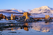 Sierras Photos - Mono Lake Winter Dawn by Tim Fleming