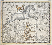 Maps Painting Prints - Monoceros Print by A Jamieson