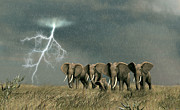 Elephant Digital Art Posters - Monsoon On The Serengeti Poster by Walter Colvin