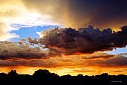 Monsoon Framed Prints - Monsoon Sunset Framed Print by David Coyle