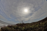 Hamptons Photos - Montauk Lighthouse by Estelita Asehan
