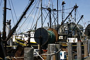 Fishing Boats Prints - Montauk Trawlers Print by Christopher Kirby