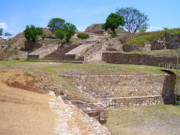 Archaeological Photos - Monte Alban 3 by Michael Peychich