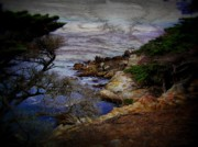 Sea View Art - Monterey Coast by Jen White