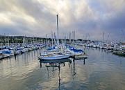 Monterey Harbor Marina - California Print by Brendan Reals