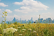 Chicago Art - Montrose Harbors Bird Sanctuary by by Rolour Garcia