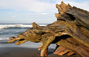 Jaco Prints - Monument at Playa Hermosa South of Jaco Costa Rica Print by Michelle Wiarda