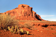 Horizon Metal Prints - Monument Valley Cactus Metal Print by Jane Rix