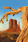 Butte Framed Prints - Monument Valley Framed Print by Jane Rix