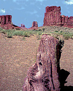 Look-alike Framed Prints - Monument Valley Tree Stump Look-Alike Framed Print by Merton Allen