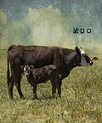 Mother And Baby Framed Prints - Moo Framed Print by Juli Scalzi