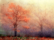 Moods Of Autumn Print by Darren Fisher