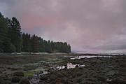 Marilyn Wilson - Moody Skies - Botanical Beach