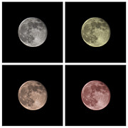 Moonshine Metal Prints - Moon Metal Print by Blink Images