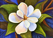 Moon Light Magnolia Print by Elaine Hodges