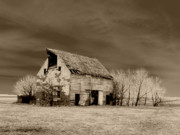 Rural Decay  Digital Art Metal Prints - Moon lit Sepia Metal Print by Julie Hamilton