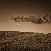 Y120817 Art - Moon On Wolds by Tony McLean