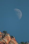 Zion National Park Photos - Moon Over Zion by Photo By Daryl L. Hunter - The Hole Picture