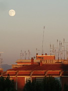 Basilio Photos - Moon sight at sunset by Luca Rosa