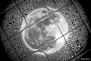 Pull Digital Art Posters - Moon Tile Reflection Poster by Stephen Younts