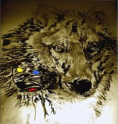 Dreamcatcher Drawings - Moon Wolf by Paula  Adams