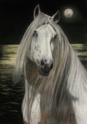 Mane Pastels - Moonlight by Sabine Lackner