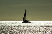 Moonlight Sail Print by Rene Triay Photography