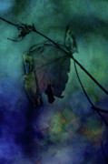 Dangling Prints - Moonlight Serenade Print by Bonnie Bruno