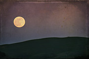 Textured Landscapes Digital Art - Moonlight Serenade by Laurie Search