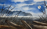 Seashore Fine Art Print Posters - Moonlight Shore Poster by James Williamson