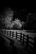Country Scenes Metal Prints - Moonlight Solitude Metal Print by Emily Stauring