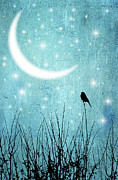 Field Image Prints - Moonlight Sonata Print by Marta Nardini