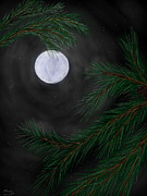 Pine Needles Digital Art Framed Prints - Moonlight Through The Pines Framed Print by Donny Stansel