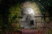 Creepers Prints - Moonlight Window Print by Christine Lake