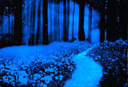 Night Scene Prints Photos - Moonlit Blue Haunting Nature Path Woodlands by Kathy Fornal