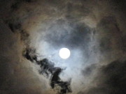 Moonlit Night Posters - Moonlit Clouds Poster by Jan Prewett