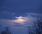 Moonlit Night Photos - Moonlit Layers by Rachel Cohen
