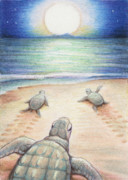 Sea Turtles Posters - Moonlit March Poster by Amy S Turner