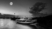 Moonlit Night Photos - Moonlit by Sydney Alvares