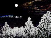 Moonlit Digital Art Prints - Moonlit Valley Print by Will Borden