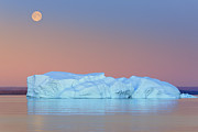 Greenland Prints - Moonrise And Icebergs At Hall Bredning, Scoresbysu Print by Proframe Photography