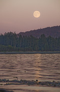 Strait Of Juan De Fuca Posters - Moonrise At Sunset Along The Shores Poster by Taylor S. Kennedy