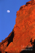 Moon Detail Posters - Moonrise in Grand Staircase Escalante Poster by Sandra Bronstein