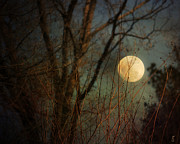 Moonlit Night Prints - Moonrise Print by Jai Johnson
