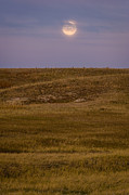 Grassland Posters - Moonrise Over Badlands South Dakota Poster by Steve Gadomski