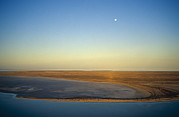 Red Centre Posters - Moonrise Over Lake Eyre In Flood Poster by Jason Edwards