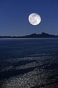 Sea Moon Full Moon Framed Prints - Moonrise Over Sea Framed Print by David Nunuk