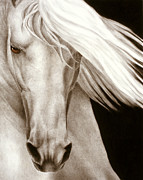 White Horse Prints - Moonrise Print by Pat Erickson